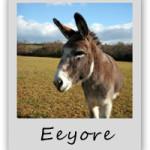 eeyore-adopt-a-donkey