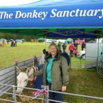 Ivybridge Donkey Sanctuary Summer Fair 2012