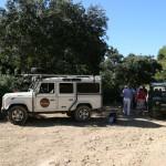 jeep safari excursion