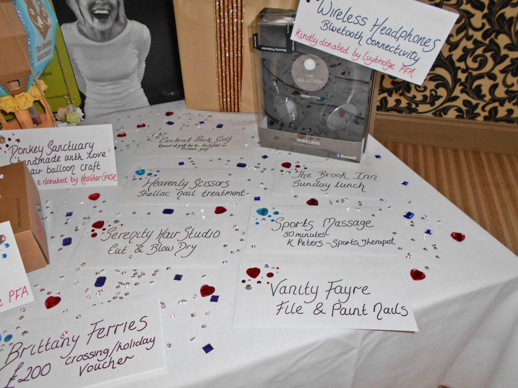 Ivybridge Donkey Sanctuary 10 Year Celebration Function 2017