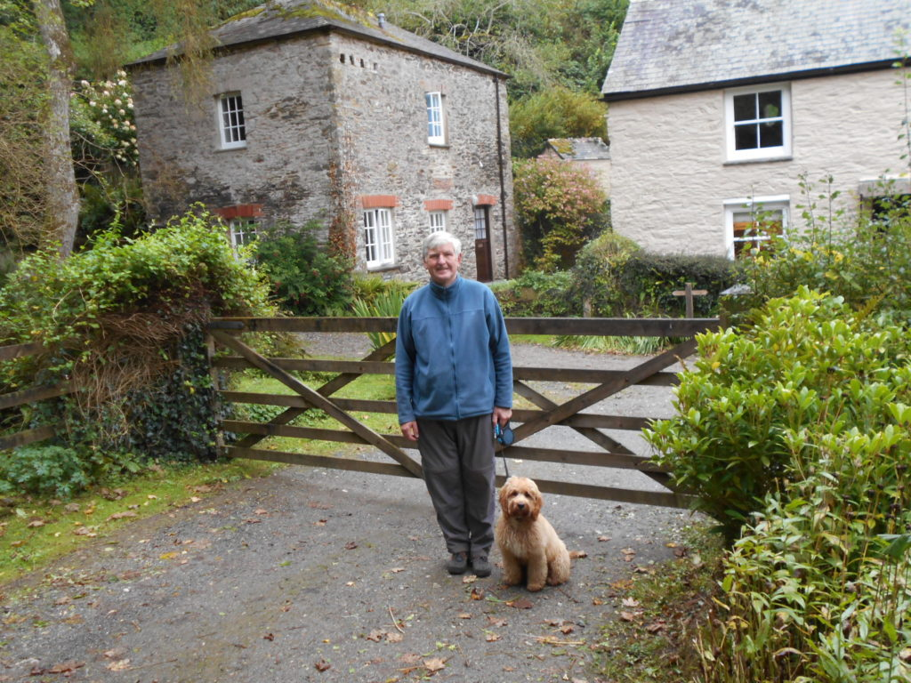 Archie the Clumberdoodle at Pont Creek Cottage Cornwall
